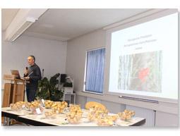 Erfolgreicher Bio-Kartoffelanbau ohne Kupfer - das sind die Bedingungen