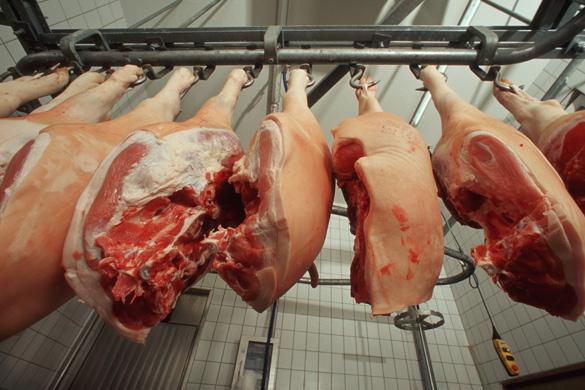 Schweineschinken im Kühlhaus