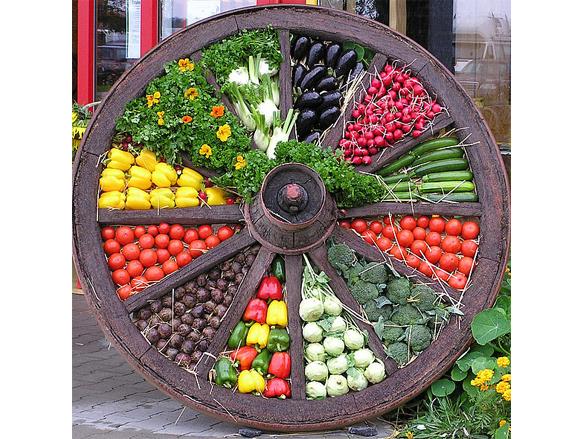 Altes Wagenrad mit frischem Gemüse gefüllt