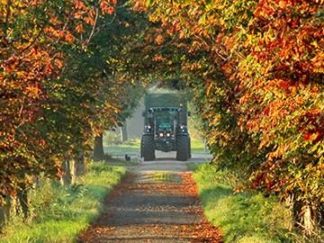 Traktor am Herbstmorgen